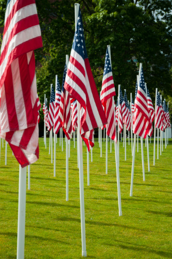 Row of American Flags on a Grassy Field