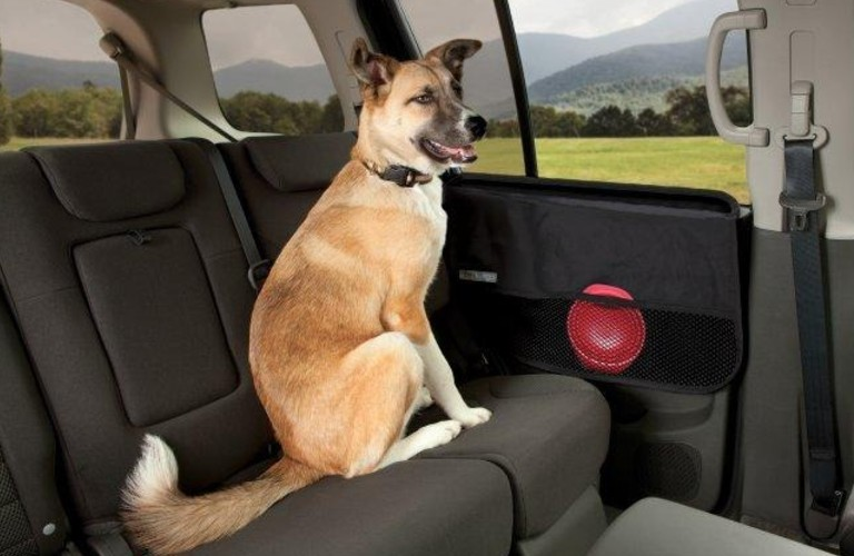 A German Shephard sitting next to a Car Door Guard in a 2021 Kia Soul.