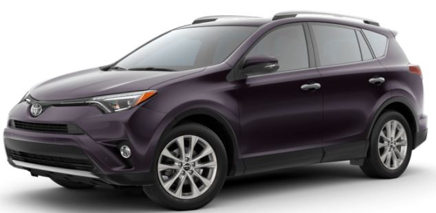 2018 Toyota RAV4 Black Currant Metallic