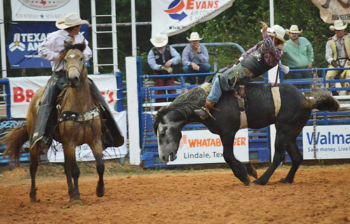 2018 Lindale Championship Rodeo   Ram Rodeo Series