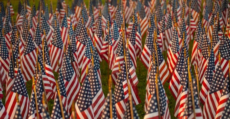Small American flags lined up at a cemetery